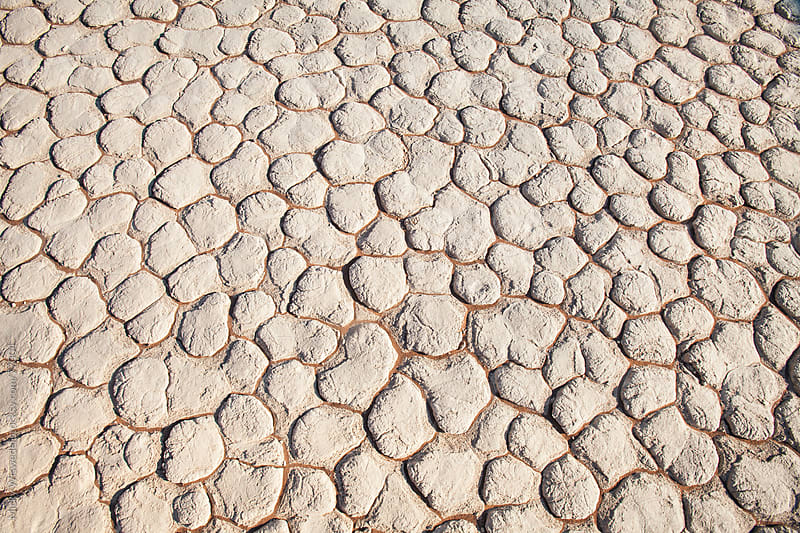 Caked desert mud texture from Sossusvlei, Namibia by Micky Wiswedel for Stocksy United