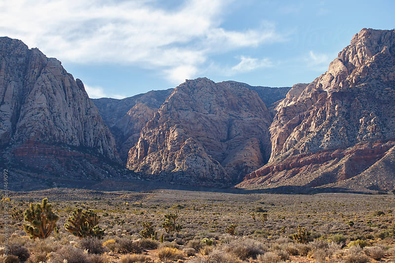Red Rock Canyon, Nevada by Amy Covington for Stocksy United