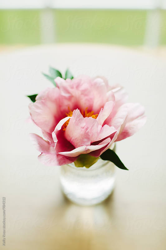 vertical image of a pink peony in a jar on a table by Kelly Knox for Stocksy United