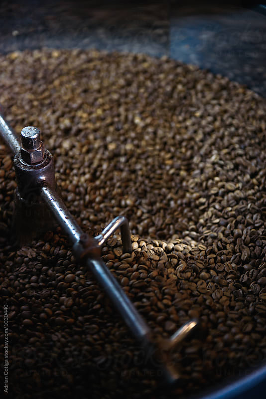 Fresh Coffee Beans; freshly roasted coffee in a  roasting machine by Adrian Cotiga for Stocksy United