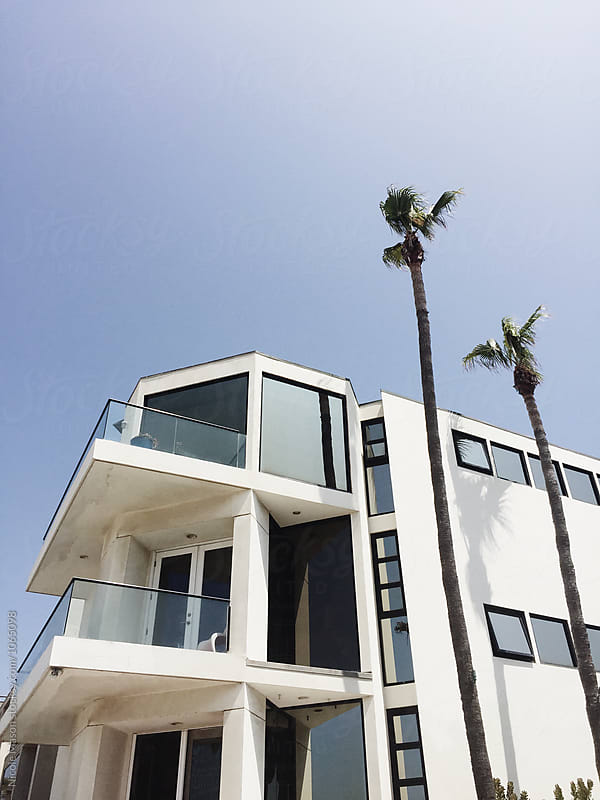 exterior of modern white house with palm trees by Nicole Mason for Stocksy United