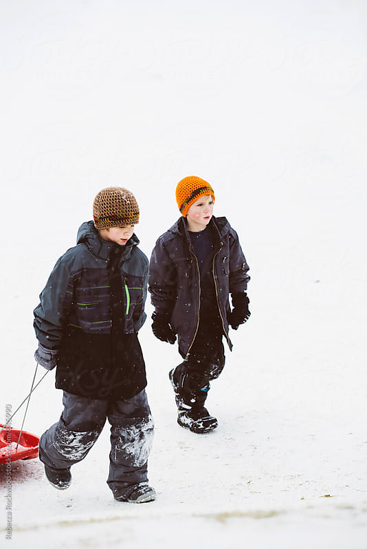 sledding by Rebecca Rockwood for Stocksy United