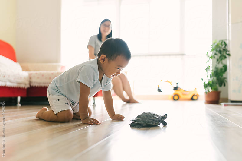 Toddler boy and mother playing with his pet turtle  by MaaHoo Studio for Stocksy United