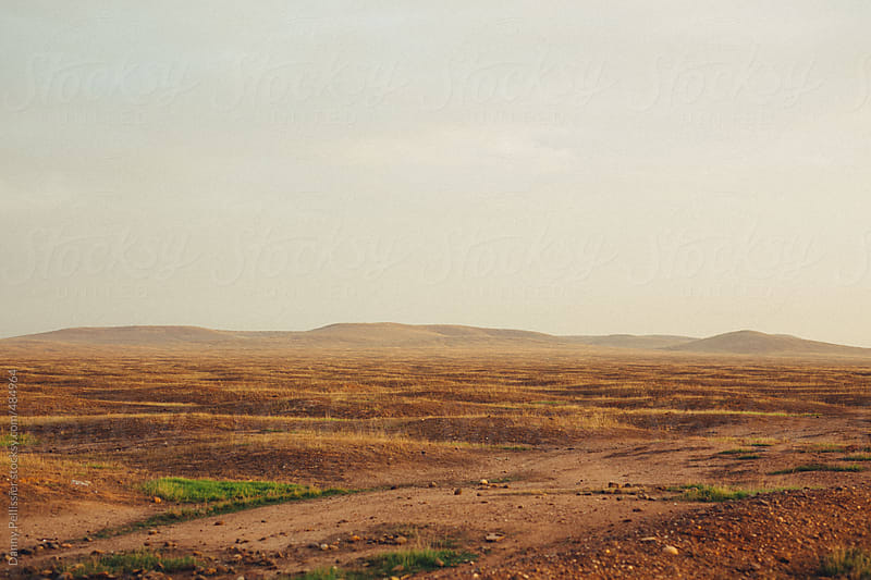 California hills by Danny Pellissier for Stocksy United