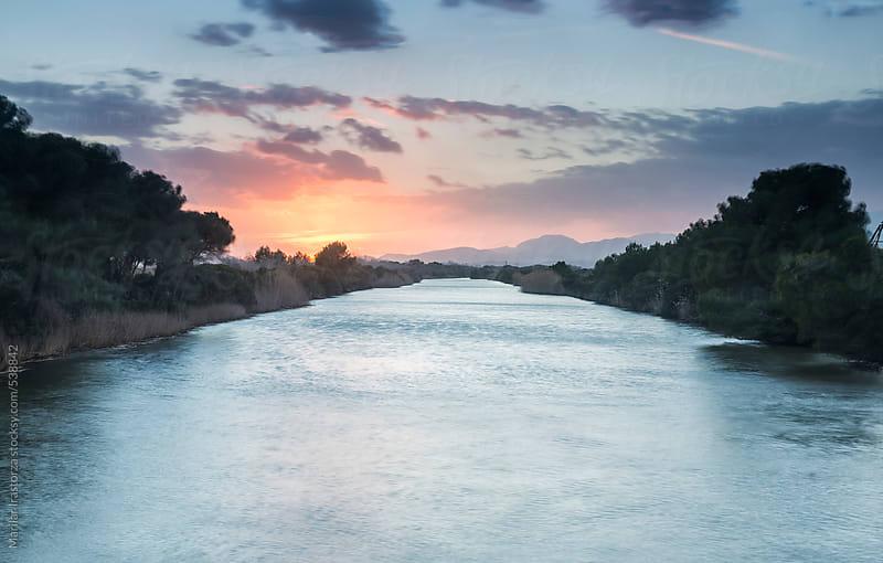 Wetland at sunset by Marilar Irastorza for Stocksy United