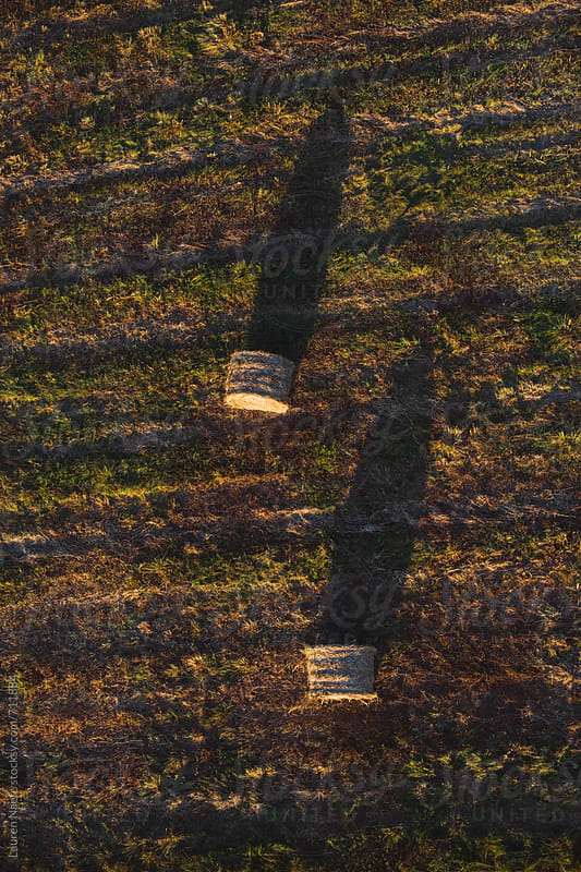 Bales of hay seen from above by Lauren Naefe for Stocksy United