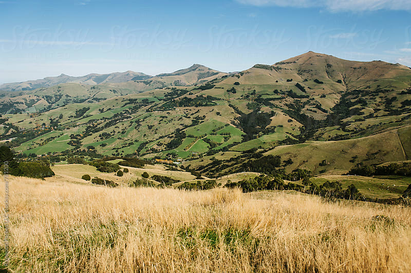 Akaroa, New Zealand by Raymond Forbes LLC for Stocksy United