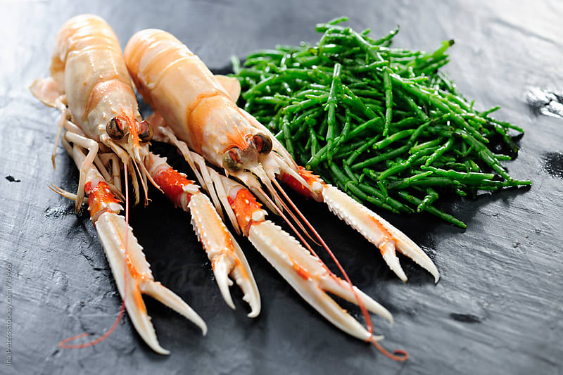 Two Crayfish and Salicornia, Samphire by Ina Peters for Stocksy United