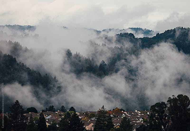 Fog nestled in the hills above a subdivision of homes by Carolyn Lagattuta for Stocksy United