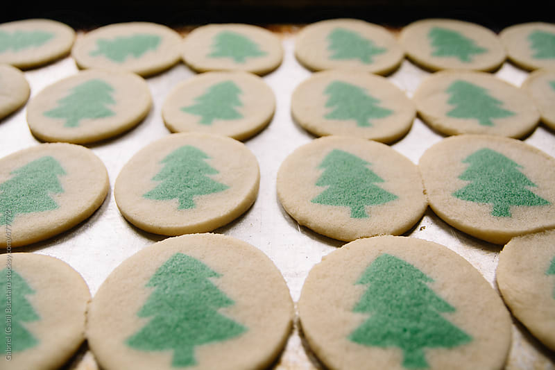 Christmas tree cookies in a tray by Gabriel (Gabi) Bucataru for Stocksy United