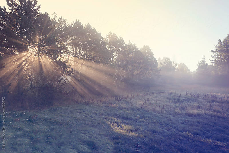 Sunrise in North Jutland, Denmark by Elisabeth Coelfen for Stocksy United
