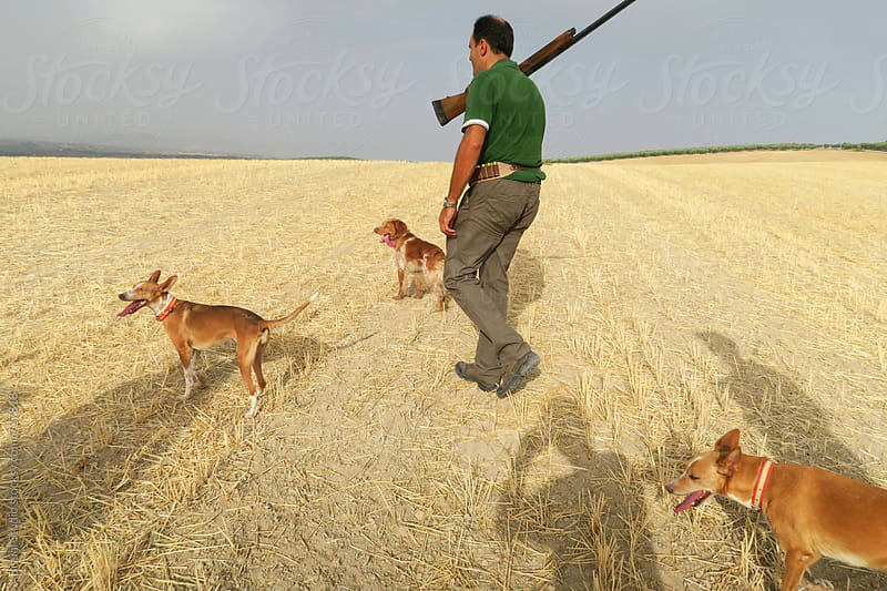 A hunter with their dogs in the countryside, Granada by Bisual Studio for Stocksy United