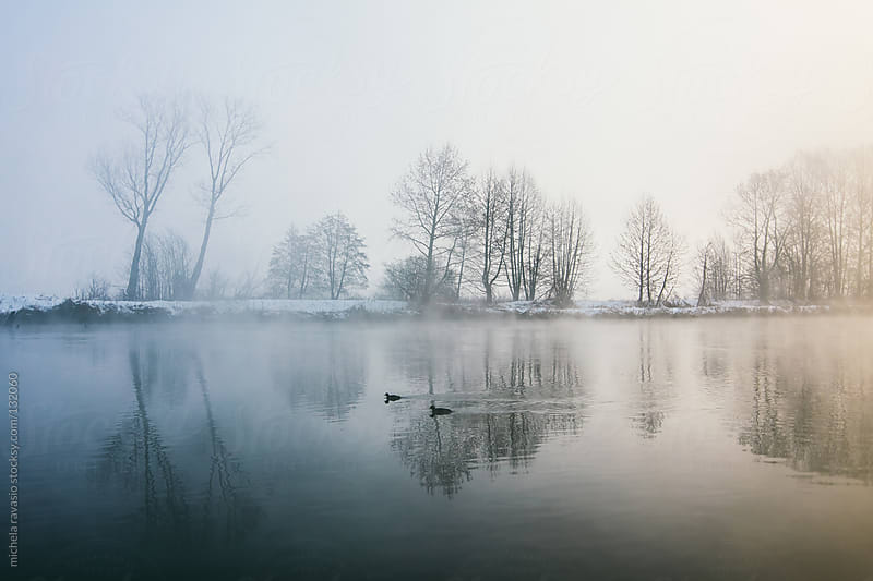 Landscape in the mist of dawn by michela ravasio for Stocksy United
