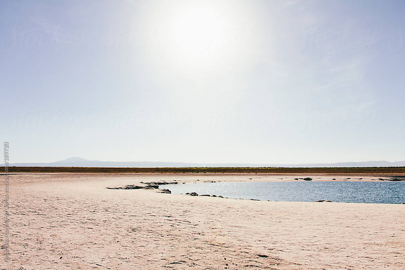 Lake - pond oasis on desert landscape with sun by Alejandro Moreno de Carlos for Stocksy United