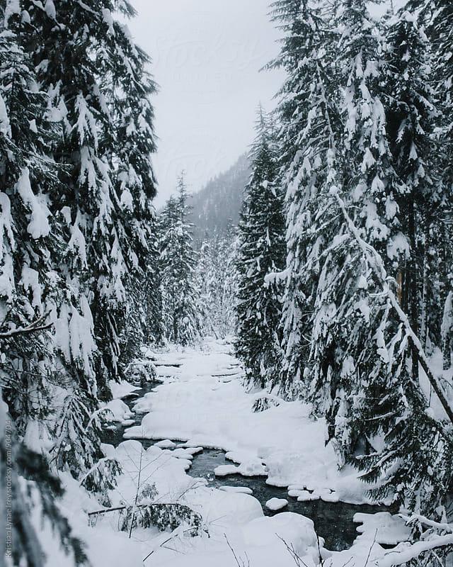Frozen River by Kristian Lynae Irey for Stocksy United