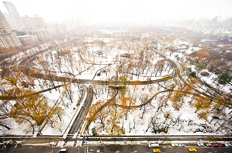 New York Overhead Central Park by Thomas Hawk for Stocksy United