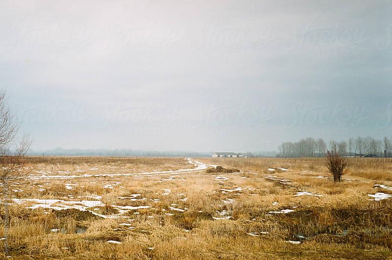 Winter landscape by Sveta SH for Stocksy United