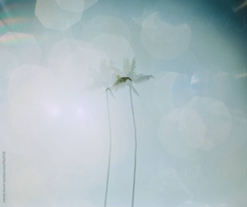 double exposure against blue sky with water refraction by wendy laurel for Stocksy United