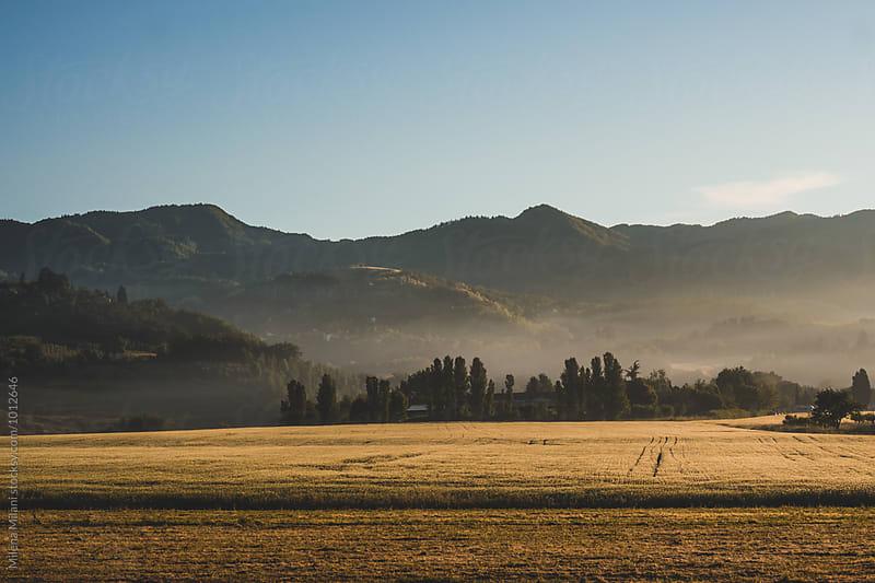 Tuscany landscape by Milena Milani for Stocksy United