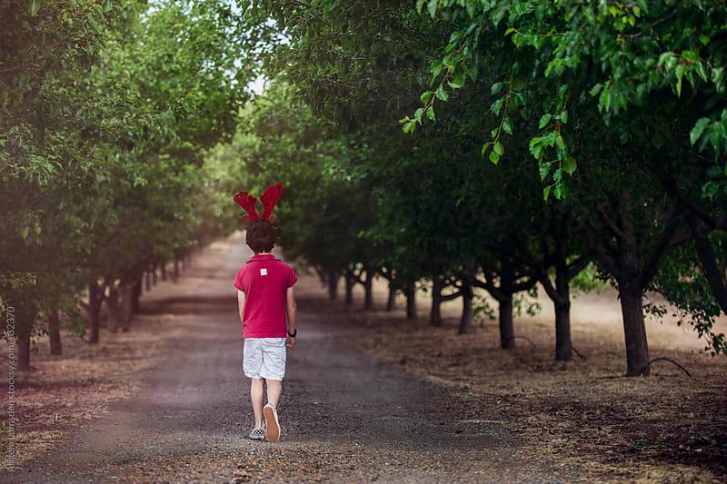 Boy walking along tree lined road by Angela Lumsden for Stocksy United