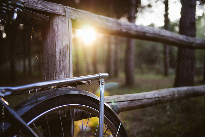 Vintage bicycle parked in the park by Tommaso Tuzj for Stocksy United
