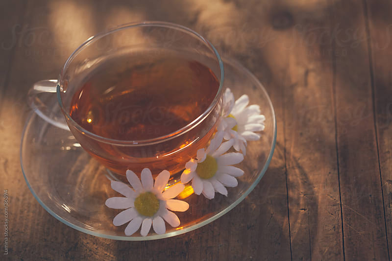 Cup of Camomile Tea by Lumina for Stocksy United