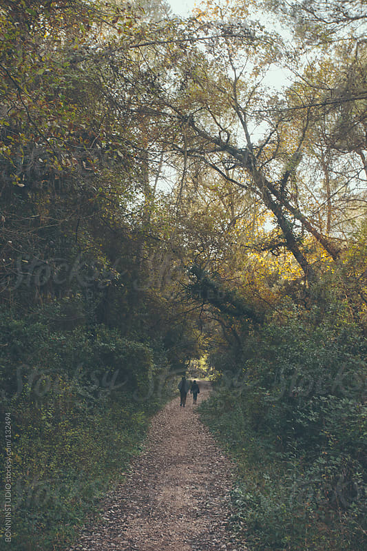 Old couple walking away on the path. Forest landscape in autumn. by BONNINSTUDIO for Stocksy United