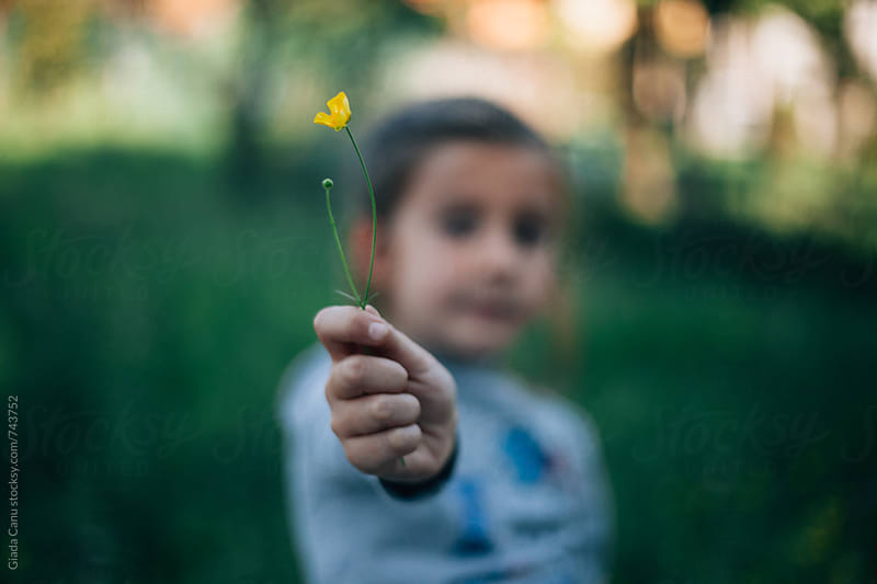 Girl with a yellow flower by Giada Canu for Stocksy United