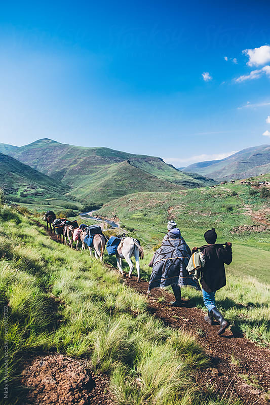 Basotho herdsmen trekking with their pack donkeys through the Lesotho mountains by Micky Wiswedel for Stocksy United