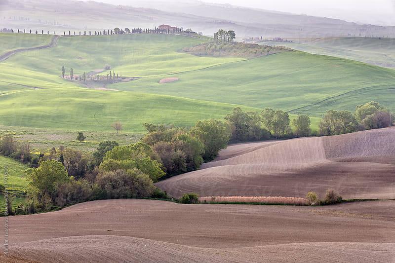 Beautiful Tuscany by Marilar Irastorza for Stocksy United