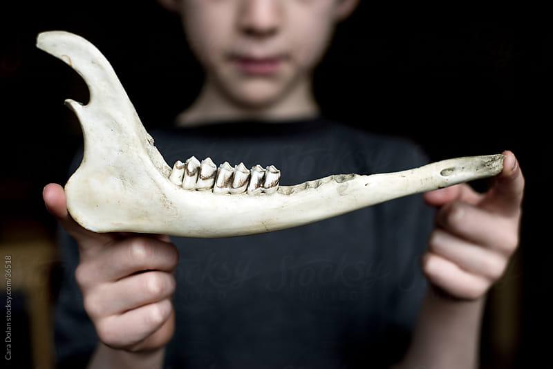 Boy holding deer jaw bone by Cara Dolan for Stocksy United