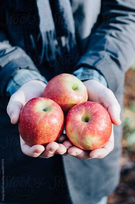 Apples in Hand by Hung Quach for Stocksy United
