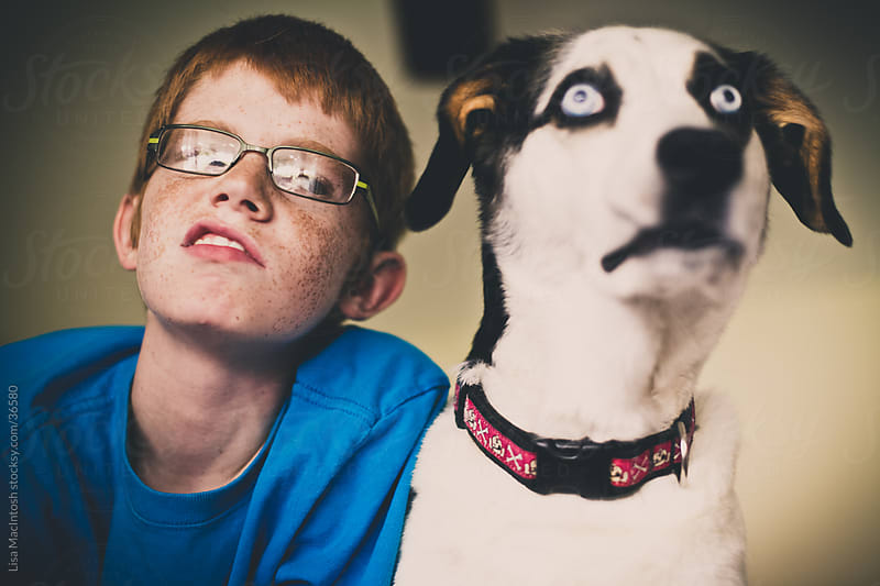 red haired boy with glasses smirking at blue eyed husky beagle cross dog by Lisa MacIntosh for Stocksy United