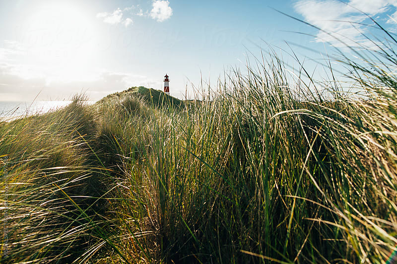 Grassy Dunes and Lighthouse on Sunny Summer Morning in Sylt (Ger by Julien L. Balmer for Stocksy United