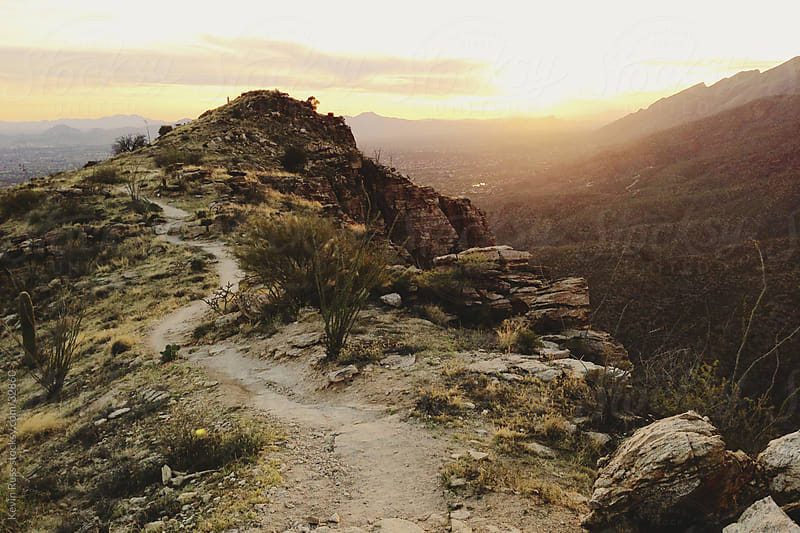 Desert Canyon Ridge Trail by Kevin Russ for Stocksy United