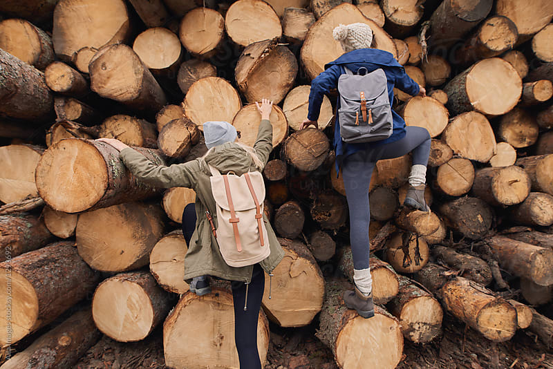 Adventure girl friends having fun climing up wood pile in forest