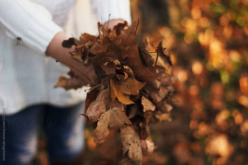 Little girl holding autumn leaves in her hands by Jovana Rikalo for Stocksy United