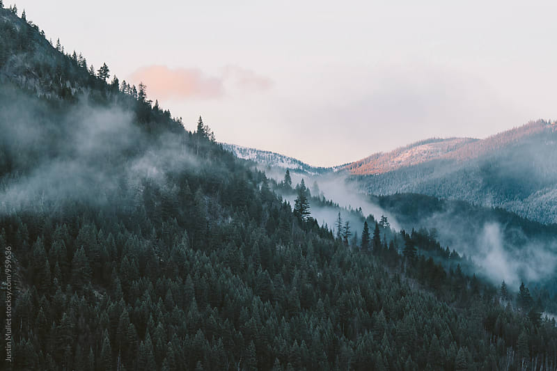 Foggy mountainside during sunrise.  by Justin Mullet for Stocksy United