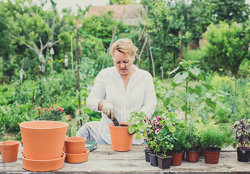 Gardener Planting on a Table by Lumina for Stocksy United