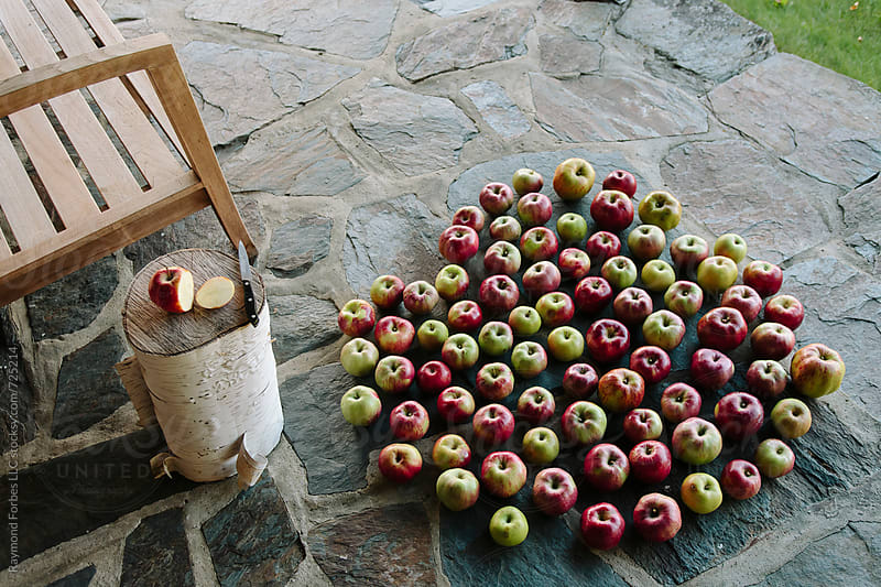 Apple Harvest by Raymond Forbes LLC for Stocksy United