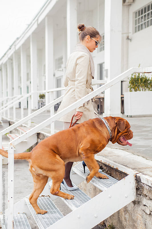 Young woman walking up stairs with her dog. by Audrey Shtecinjo for Stocksy United
