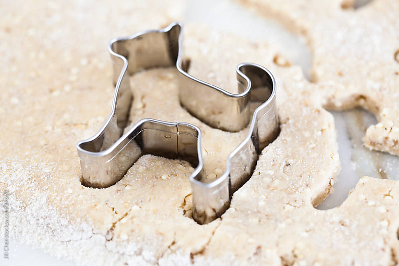 Making Dog Biscuits by Jill Chen for Stocksy United