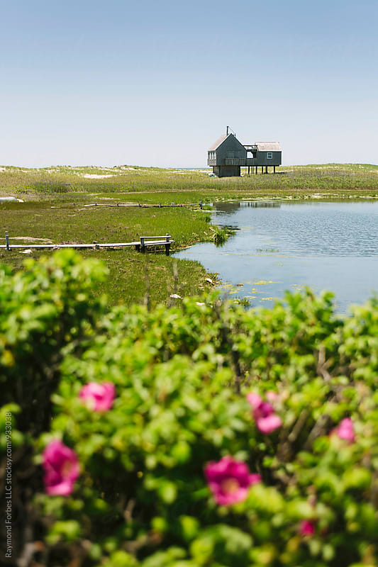 Summer on Nantucket Island, Massachusetts  by Raymond Forbes LLC for Stocksy United