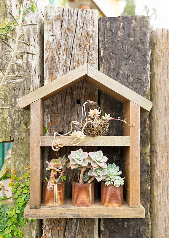 House shape shelf on wooden wall by Lawren Lu for Stocksy United