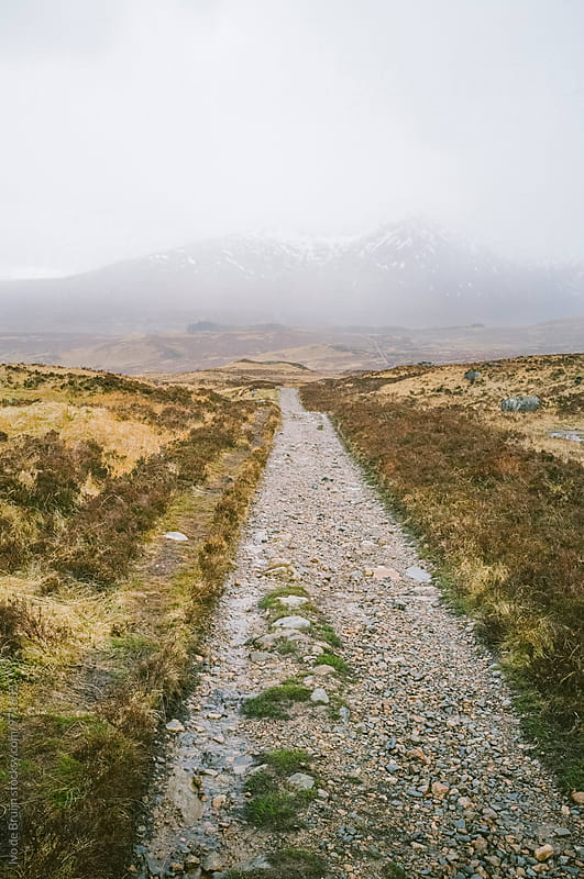 A road or walk in a barren landscape in the Scottish Higlands by Ivo de Bruijn for Stocksy United