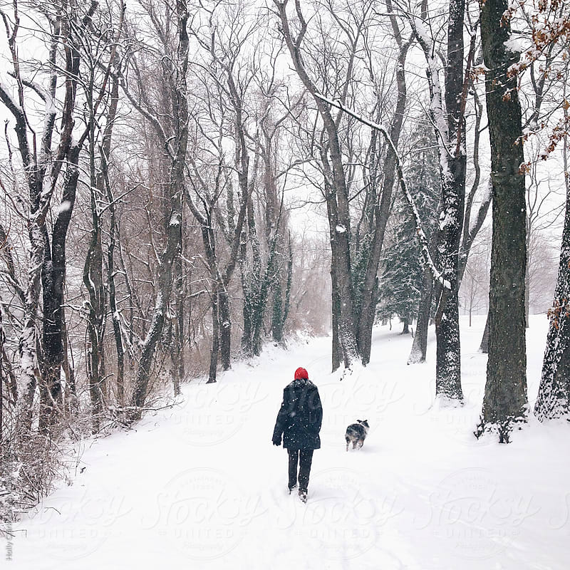 A woman and her dog walk down a snowy lane. by Holly Clark for Stocksy United