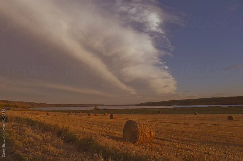 Hay bales on farm land at dusk by Carey Shaw for Stocksy United