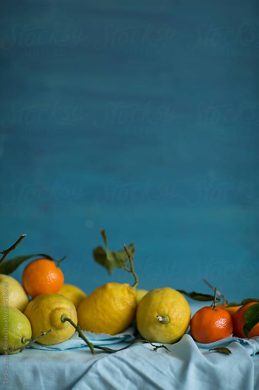 Lemons and clementines by Török-Bognár Renáta for Stocksy United