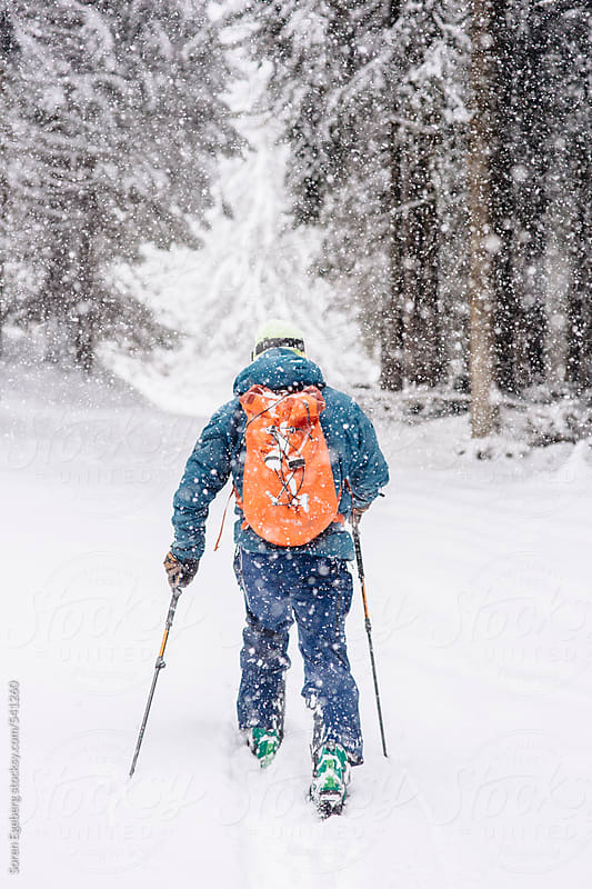 Man hiking through snow on forest trail in winter during a snowfall by Soren Egeberg for Stocksy United