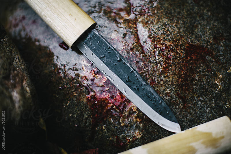 One dirty bloody wet knife on a stone after skinning a fish by LORE for Stocksy United